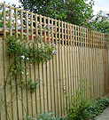 Featherboard panel fence with trellis top