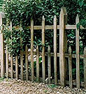 Oak palisade fence