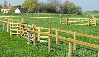 post_rail_horse_paddock_fencing