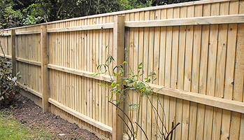 Standard Wooden Panel Fence